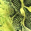 Reptil Neon