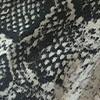 Reptil Gris